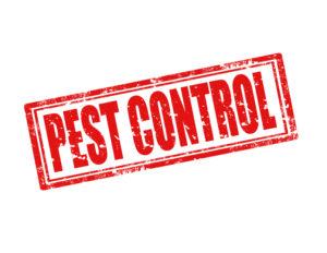 pest control mckinney tx